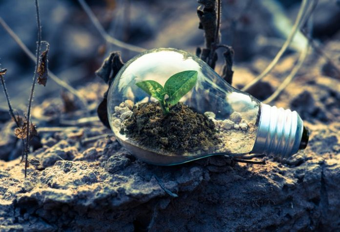Environmental Services Industry Digital Plans: SMEs Should Know About